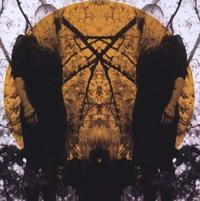 Austra - Feel It Break CD
