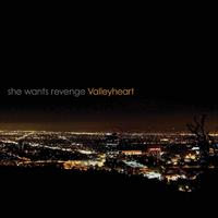 She Wants Revenge - Valleyheart CD