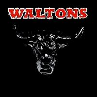 The Waltons - Essential Country Bullshit CD