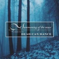 Various - Summoning The Muse - Tribute To DCD CD