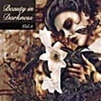 Various - Beauty In Darkness Vol. 3 CD