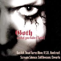 Various - Goth Is What You Make It Vol. 1 CD