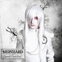 Meinhard - Beyond Wonderland CD