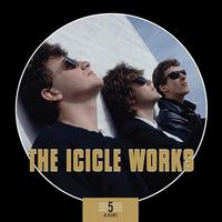 The Icicle Works - 5 Albums Box