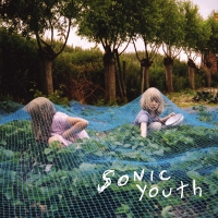 Sonic Youth - Murray Street LP
