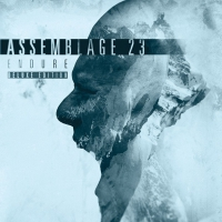 Assemblage 23 - Endure (Deluxe Edition) 2CD