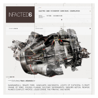 Various - Infacted Compilation Vol. 6 CD