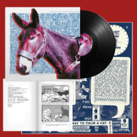 Protomartyr - Ultimate Success Today LP