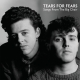 view Tears For Fears - Songs From The Big Chair LP