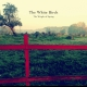 The White Birch - The Weight Of Spring CD ansehen