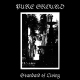 view Pure Ground - Standard Of Living CD