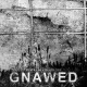 view Gnawed - Pestilence Beholden CD