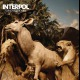 view Interpol - Our Love To Admire CD